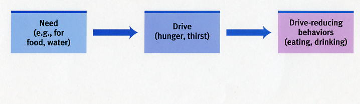 drive reduction theory psychology