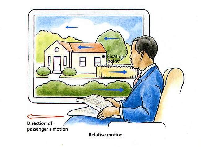 organization in vision essays on gestalt perception