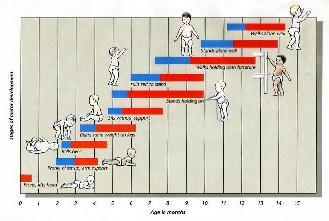 developmental milestones chart